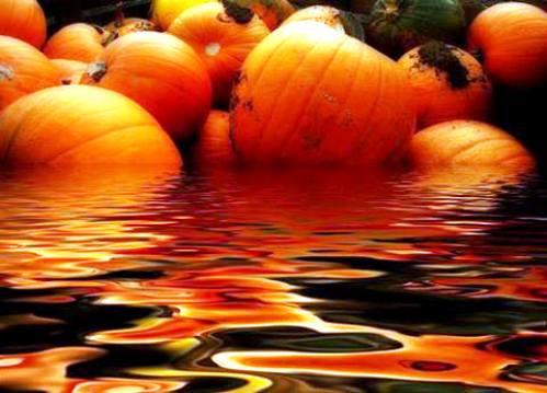 Marinai col sale in zucca (foto Il Bollettino dei naviganti) - www.lavocedelmarinaio.com - copia