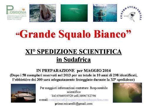 XI spediazione scientifica per squalo bianco in sudafrica - www.lavocedelmarinaio.com