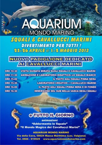 25-26.4.2013 Acquarum Massa Marittima