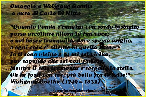 COPPIA DI GERMANI REALI IN CORTEGGIAMENTO (foto Carlo di Nitto per www.lavocedelmarinaio.com)
