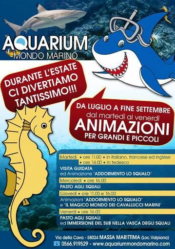 Acquarium mondo marino per www.lavocedelmarinaio.com