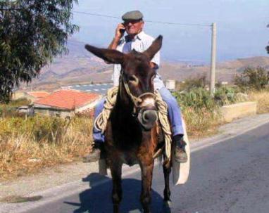 Risultati immagini per sardi sul mulo