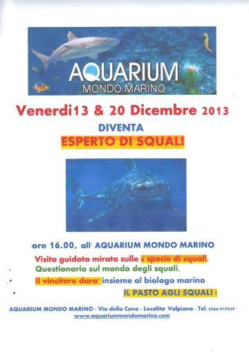 13.12.2013 all'acquarium mondo marino di massa marittima  - www.lavocedelmarinaio.com
