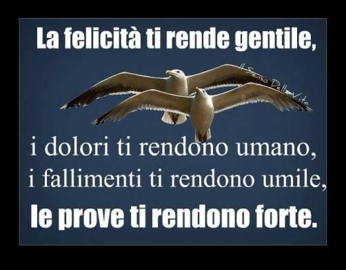 27.12.1960 nasceva un emigrante di poppa - www.lavocedelmarinaio.com