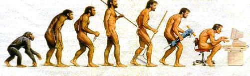 evoluzione-apparente-della-specie (foto deborahannolino)