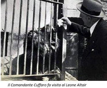 Il Comandante Cuffaro fa visita al leone Altair - www.lavocedelmarinaio.com