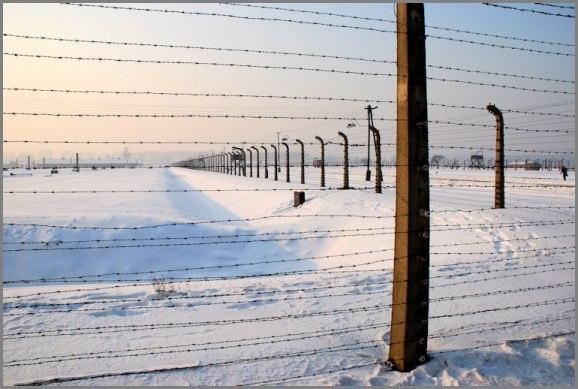 Auschwitz f.p.g.c. Carlo Di Nitto a www.lavocedelmarinaio.com