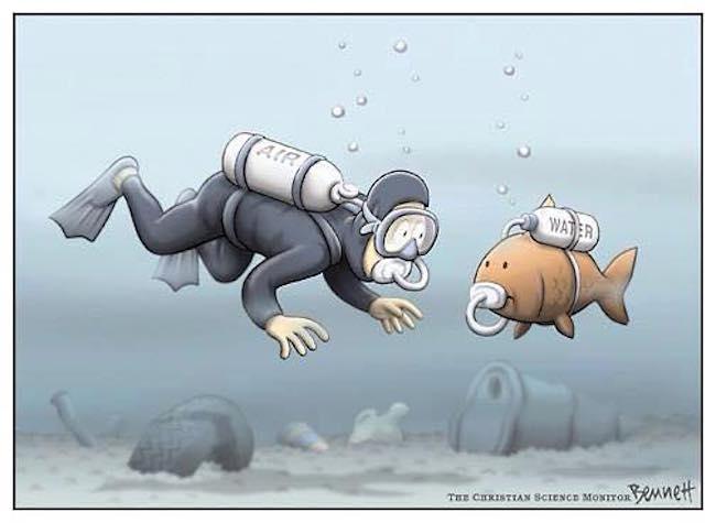 salviamo il mare
