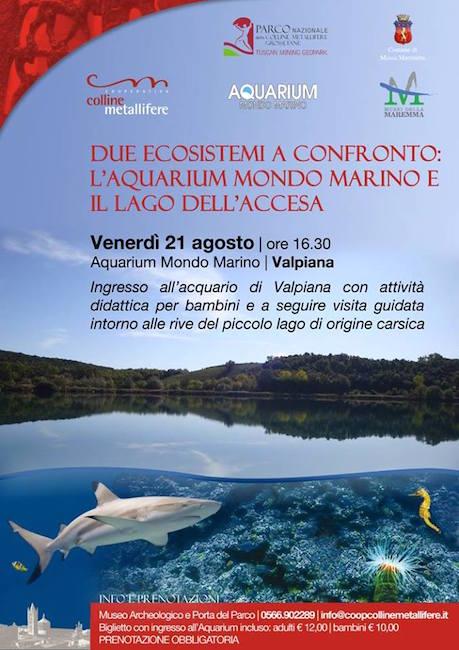 21.8.2015 all'acquarium mondo marino - www.lavocedelmarinaio.com